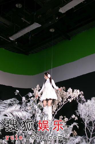张韶涵拍摄新歌MV 化身雪白精灵娇艳动人(图)