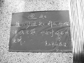 暗访广东佰易单采血浆站 职业卖血者驻扎十年