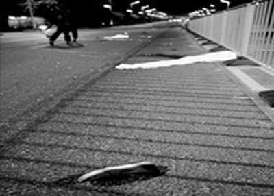 广东特种车牌车撞死4名路人 肇事司机逃逸(图)