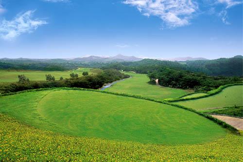 高尔夫世界杯进入观澜湖时代 欧米茄冠名十二年