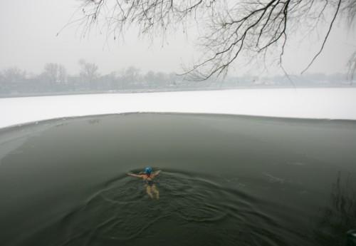 竞报 李昊 《冬泳》