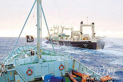 日捕鲸船遭