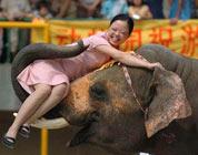 """学生时代:我坐""""神象""""回河南"""