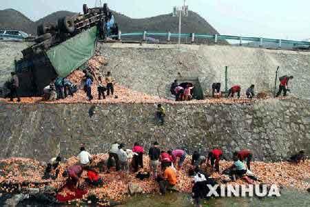 组图:贵州货车高速公路翻车 村民哄抢散落水果