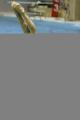 图文:中国跳水队将出征世锦赛 林跃在训练中