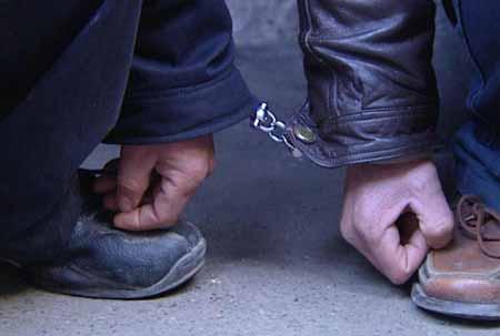 上海失窃助动车流入黑市调查:牌照价格超万元