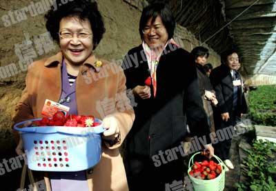人大代表下乡讲解报告 村民拿草莓热情款待(图)