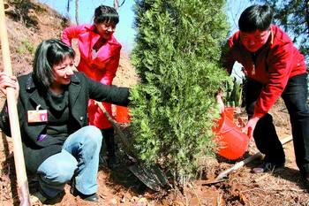为北京奥运会添片绿 湖南省两会代表在京植树