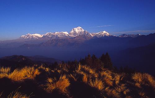 日出不久的Dhaulagiri Himal群山