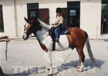 1994年,不到5岁的华天第一次坐到马背上