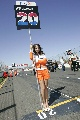 图文:[F1]澳大利亚站美女  发车位前的美女