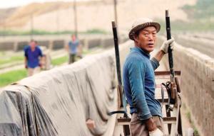 砖厂的工人工作得像一条驴一样。他们每天必须完成定量的任务,要不然就得罚钱。