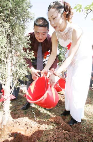 张清王竞莹种下同心树
