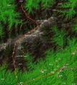 攀登太白山之全程路线图(一)