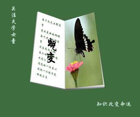 作者:徐红燕