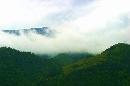 雾绕南风面