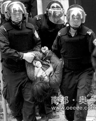 特警将投石男子制服并抬到楼下。范舟波 马强 摄