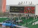图文:[中超]北京国安VS大连 实德球迷远征京城