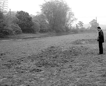 2000多只死鸭被填埋在这块地里