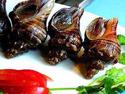 材料:海螺肉50克,紫菜1张,芝士片15克,芦笋10克,青红椒各5克,土豆图片