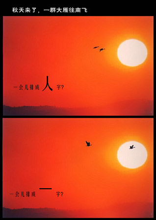 作者:张波