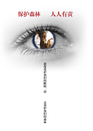 作者:王文燕