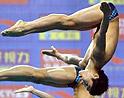 跳水冠军赛