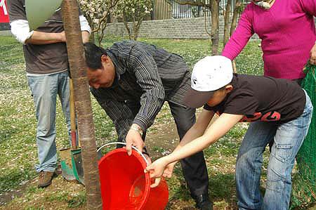 """图文:""""家庭游""""玉渊潭植树 为小树浇水"""