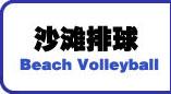 排球,沙滩排球
