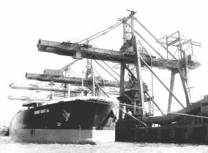 装满铁矿石的轮船正在码头卸货。(资料图片)