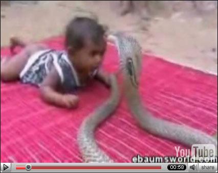 图为婴儿与眼镜蛇戏耍的情景(国际在线视频截图)