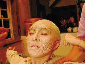 范冰冰恐怖造型曝光呆坐六小时皮肤起疹(图)