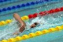 图文:全国游泳冠军赛第三日 张琳奋力划水冲刺