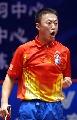 图文:世乒赛中国队全体队员 男1号种子马琳