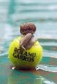 图文:法网精彩历史组图 蜗牛爬上了网球