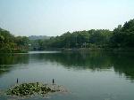 龙泓涧湿地