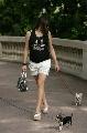 图文:[F1]摩纳哥站性感美女 美女与小狗