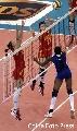 图文:女排精英赛及颁奖仪式 中国队拦网得分