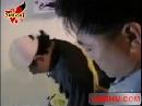 图:歌手谢东涉毒被抓- 谢东被警察带走