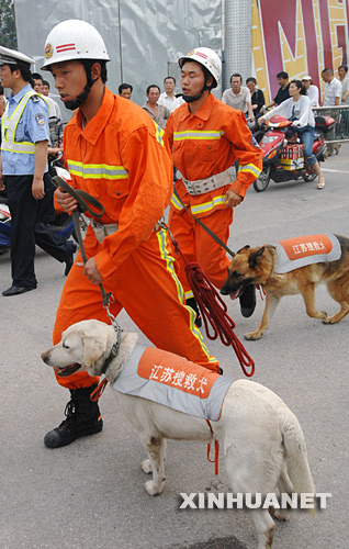5月28日,救援人员准备使用搜救犬对失踪者进行搜救