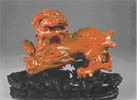 红珊瑚太狮