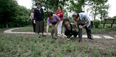 6月4日,闵行体育公园初步建成的芳香植物园内,志愿者们正用手轻轻将几株植物的香味扇入鼻中。早报记者张栋图