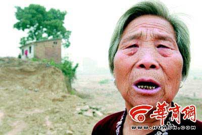 村民和古槐树有了感情,不忍心看着树被砍伐 本报记者 蔡京瑞 摄