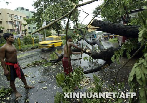 6月13日,在印度东部城市加尔各答,为了不影响交通,工人把倒在路中央的树干砍断,清理路面。