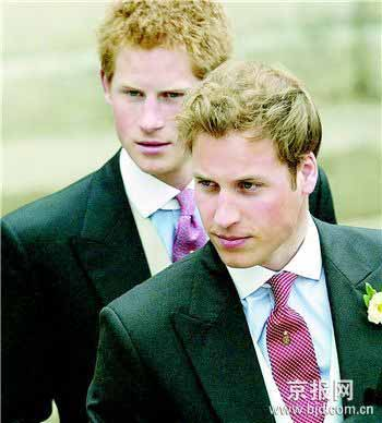10年后,威廉和哈里对母亲死因仍困惑。