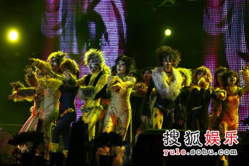 橙色盛典北京站—— 音乐剧《猫》