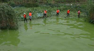 工人们正在清理被污染的河道安光系早报资料