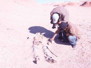 探险爱好者刘先生和朋友发现干尸(图片来源:新疆都市报)