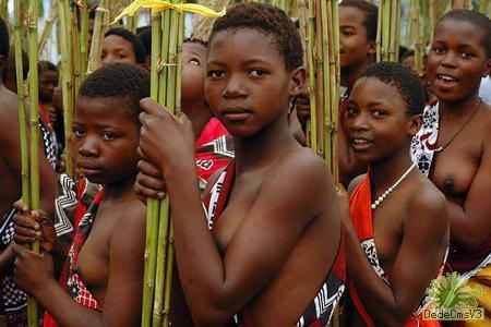 梦碎加纳:爱恨交织说非洲朋友