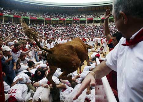 奔牛节第三天,一头牛从狂欢人群身上踩过,冲进斗牛场。